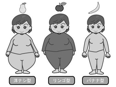 遺伝子型肥満の分類【ナシ、りんご、バナナ型肥満】 カテゴリー:その他素材 イラストの説明: Wm