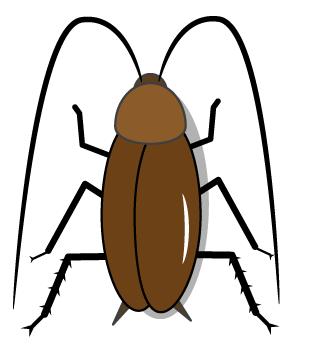 クロゴキブリ クロゴキブリ【メディカルイラスト図鑑】無料の医療・美容素材集